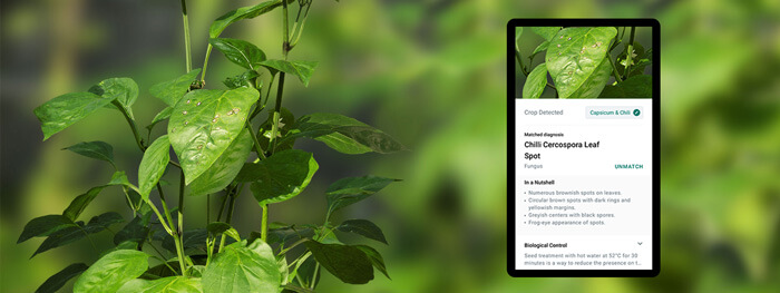 GörBil Application for farmers, agricultural workers and plant lovers to help increase their farming productivity.